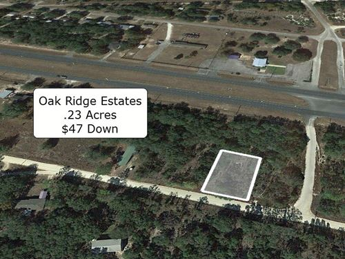 .23 Acre Lot in Oak Ridge Estates : Bronson : Levy County : Florida