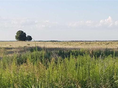 74 Acres Cypert Farm-Knox CO TX : Knox City : Knox County : Texas
