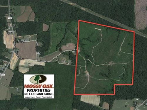 128 Acres of Hunting Land For Sale : Roxboro : Person County : North Carolina
