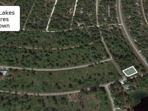 .25 Acre Amazing Corner Lot : Lake Placid : Charlotte County : Florida