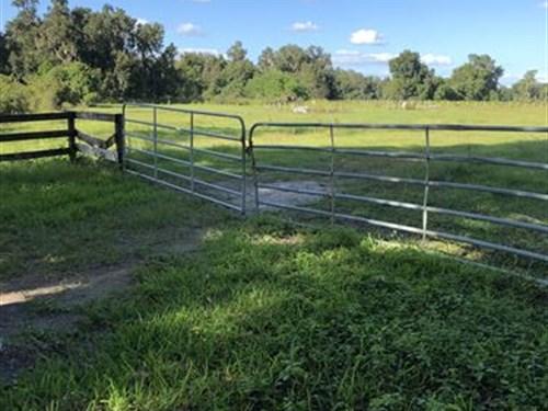Pasture 20 Acres, 2 Parcels : Webster : Sumter County : Florida