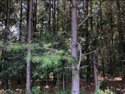 204.9 Acres In Lafayette County : Abbeville : Lafayette County : Mississippi