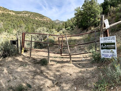 Off Grid Mountain Hunting Property : Loma : Garfield County : Colorado