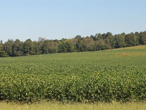 105+ Acre Simpson County Farm : Franklin : Simpson County : Kentucky