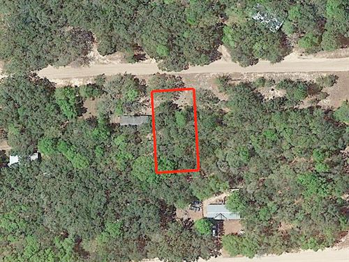 1/4 Acre Lot Near Interlachen : Interlachen : Putnam County : Florida