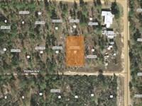 .22 Acres In Putnam County, Fl : Interlachen : Putnam County : Florida
