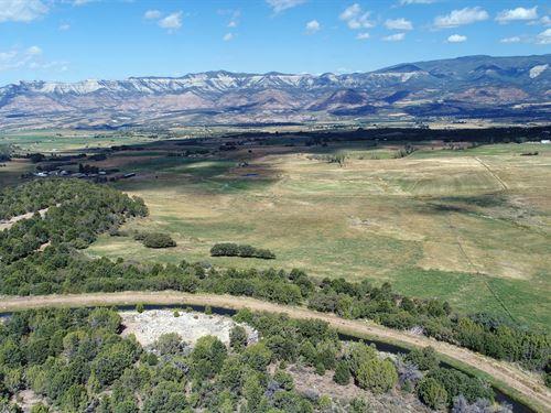 Vacant Land Irrigation Colorado : Collbran : Mesa County : Colorado
