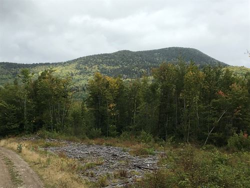 Mountain View Timberland in Maine : Mount Chase : Penobscot County : Maine