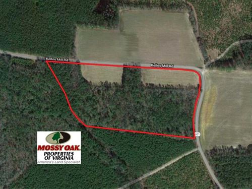 17 Acres of Timber And Farm Land : Ivor : Southampton County : Virginia