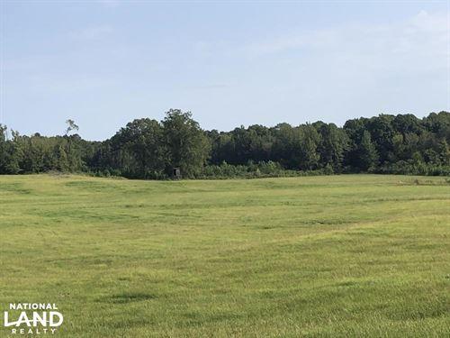 Pristine Pasture Land : Carrollton : Carroll County : Mississippi
