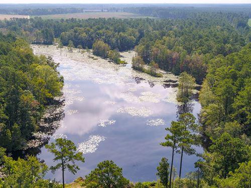 Harpers Pond : Estill : Hampton County : South Carolina