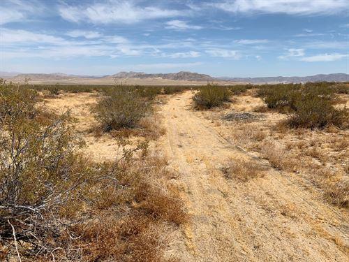 5 Acres Lucerne Valley Desert Sale : Lucerne Valley : San Bernardino County : California