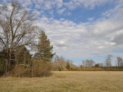Dry Fork Tract : Elberton : Elbert County : Georgia