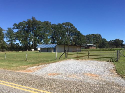 Multi-Use Metal Bldg By Enterprise : New Brockton : Coffee County : Alabama
