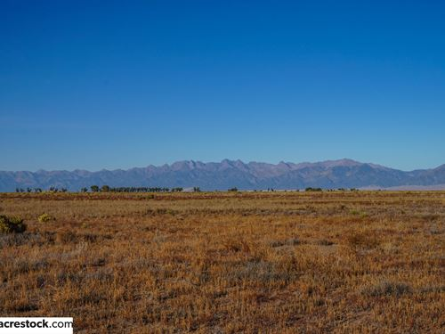 Wholesale Farmland W/Electricity : Alamosa : Colorado
