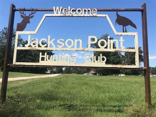 Jackson Point, Mississippi River : Elaine : Phillips County : Arkansas