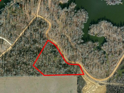 Lot 43 Fishermans Bay : Lowndesboro : Lowndes County : Alabama