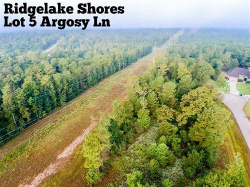 2.54 Acres in Montgomery County : Montgomery : Texas