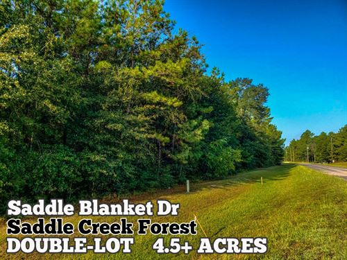 4.54 Acres In Grimes County : Waller : Grimes County : Texas