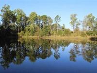 Great Recreational Property : Chauncey : Dodge County : Georgia