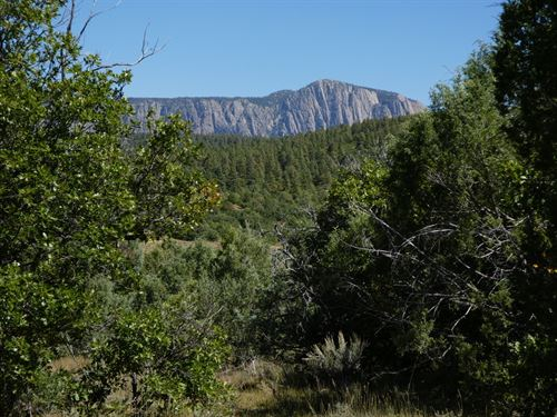 11 Acres Close To Chama Nm : Tierra Amarilla : Rio Arriba County : New Mexico