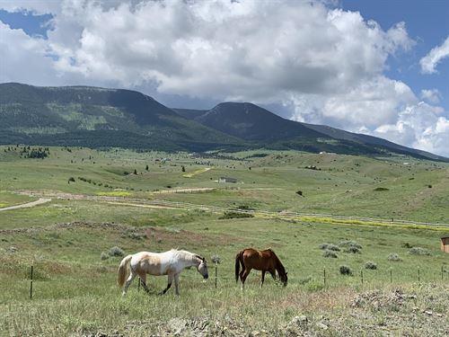 14 Eagle Trail : Livingston : Park County : Montana