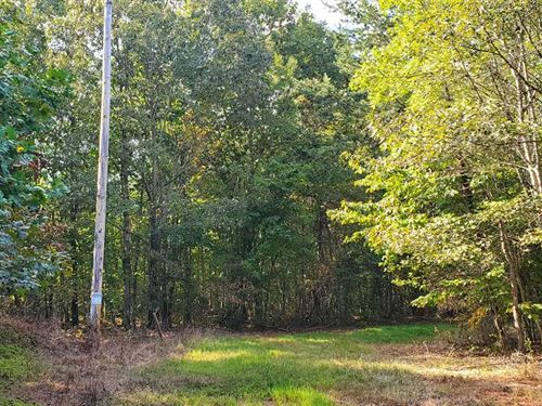 84.64 Acres in Sherrills Ford : Sherrills Ford : Catawba County : North Carolina