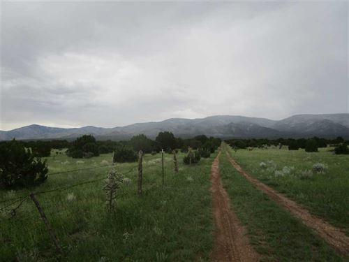 39.03 Acres Richardson Canyon : Capitan : Lincoln County : New Mexico