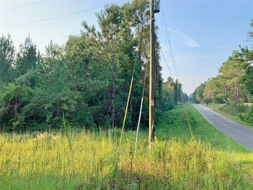 15 Acres Residential Land For Sale : Moselle : Jones County : Mississippi