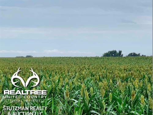 Comanche County, Ks, Farmland : Coldwater : Comanche County : Kansas