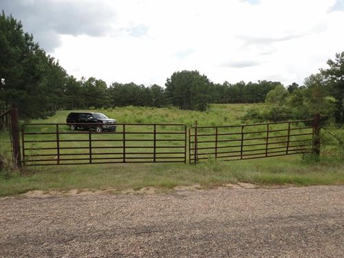 Pasture Land Cattle Farm Lincoln : Brookhaven : Lincoln County : Mississippi