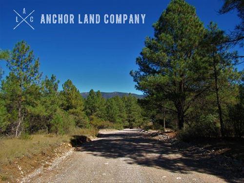 $499 Down Then $59 /Mo : Timberon : Otero County : New Mexico