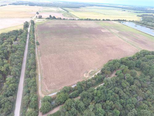 Duck Hunting Farm Near Cache River : Amagon : Jackson County : Arkansas