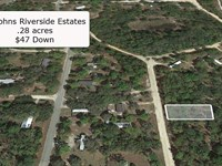 .28 Acre Mobile Friendly Lot : Satsuma : Putnam County : Florida
