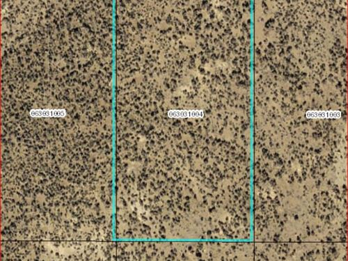 1.13 Acres In Elko County Nv : Ryndon : Elko County : Nevada