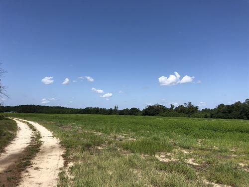 Clodfelter 122 : McBee : Chesterfield County : South Carolina