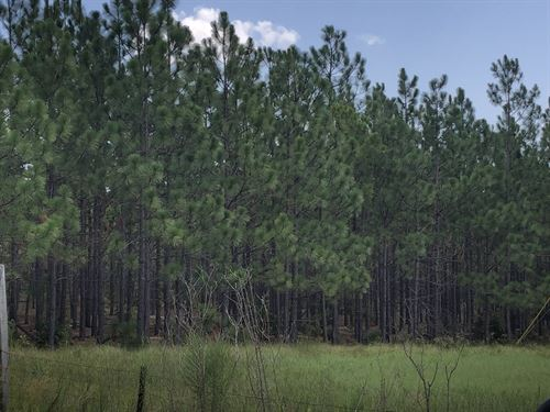 Clodfelter 355 : McBee : Chesterfield County : South Carolina
