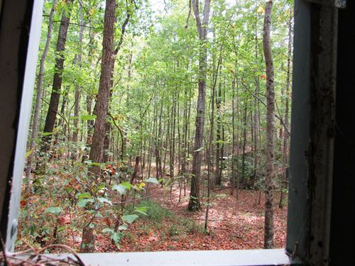 8-042 Buck Hollow : Remlap : Blount County : Alabama