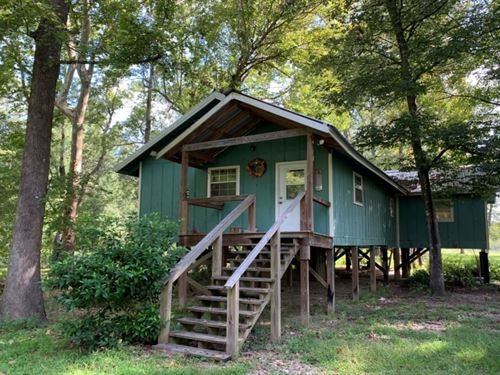 3 Acres With A Camp In Washington : Angie : Washington Parish : Louisiana