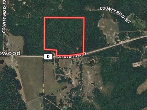 40 Acres Wooded Hunting Home Site : Eminence : Shannon County : Missouri