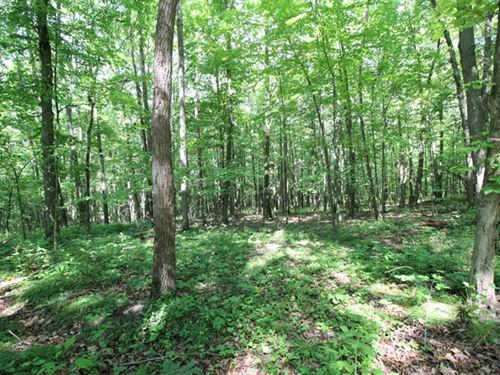 8 Building Lots Ranging From : Pittston : Lackawanna County : Pennsylvania