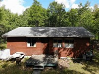 140 Acres of Nice Timber : Freeman : Clare County : Michigan