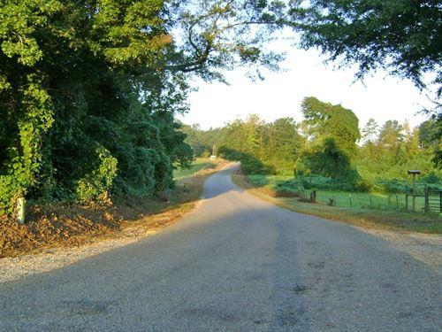 Moundville Tract : Moundville : Tuscaloosa County : Alabama