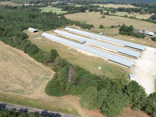 Weeks Poultry 3 House Broiler Farm : Hackleburg : Marion County : Alabama