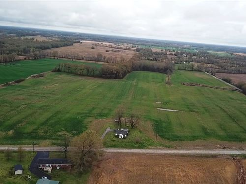 84.7 Acres, 75 Tillable, Bldg Sites : Dyer : Gibson County : Tennessee