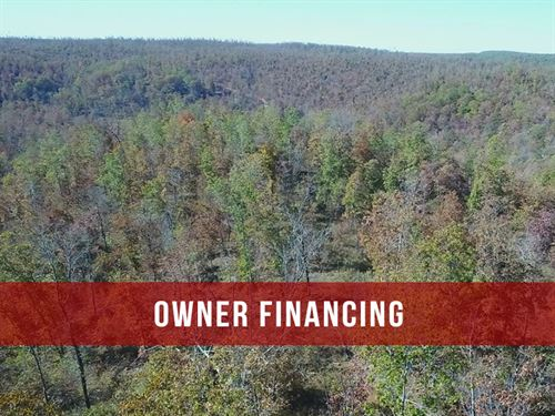 $1500 Down On Mo Hunting Land : Eminence : Shannon County : Missouri