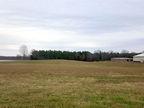 Commercial Acreage Ideally Located : Clarksburg : Henderson County : Tennessee