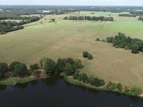 Morris County Ranch 133 : Naples : Morris County : Texas