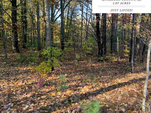 1.07 Acres In Muskegon County, MI : Muskegon : Michigan