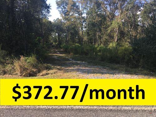 $0 Down & Owner Financed : Rentz : Laurens County : Georgia